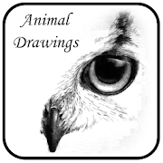 Animal Drawings by GoBlogApps icon