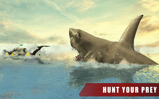 免費下載動作APP|Angry White Shark Attack World app開箱文|APP開箱王