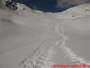 Photo: IMG_7047 le nostre firme nella neve