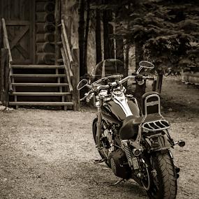 Rest Stop  by Anthony Balzarini - Transportation Motorcycles ( #bikerlife, #motorcycle, #blackand white, #davidson, #harley, #photography,  )