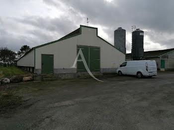 ferme à Marsac-sur-Don (44)