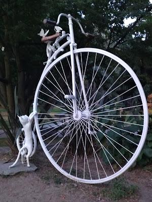 il monociclo di elibetta