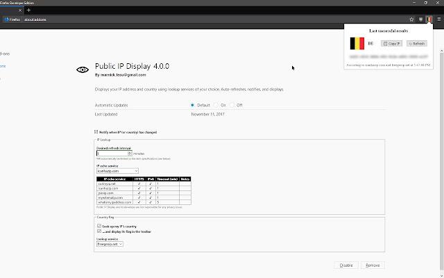 Public IP Display
