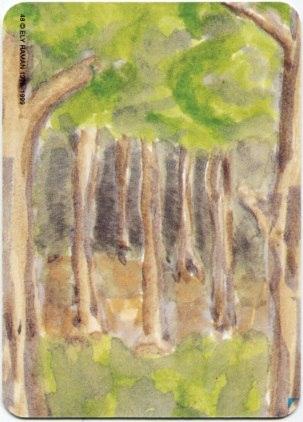 Карта из колоды метафорических карт Ох: лес