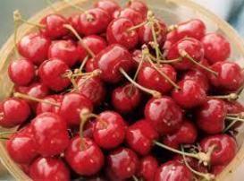 Cherry Bruschetta Recipe
