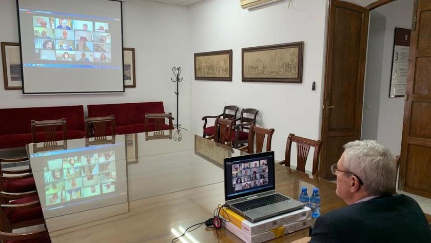 Pleno celebrado de forma virtual en Vera.