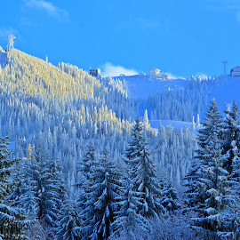 Lovely winter by Ciprian Apetrei - Landscapes Mountains & Hills ( mountains, forest, snow, romania, landscape )