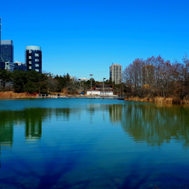 Early Toronto Spring by Marc Loranger - City,  Street & Park  City Parks ( parks, reflections, outside, cityscape, water )