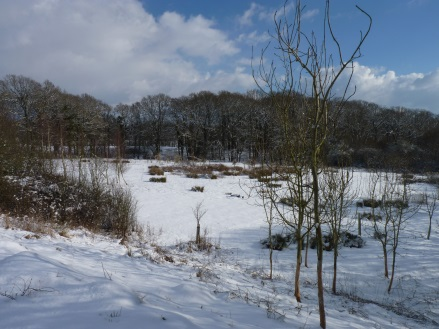the camping meadow in the snow