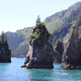 by Sean Kushmick - Landscapes Caves & Formations ( mountain, alaska, seascape, coastline, coastal )