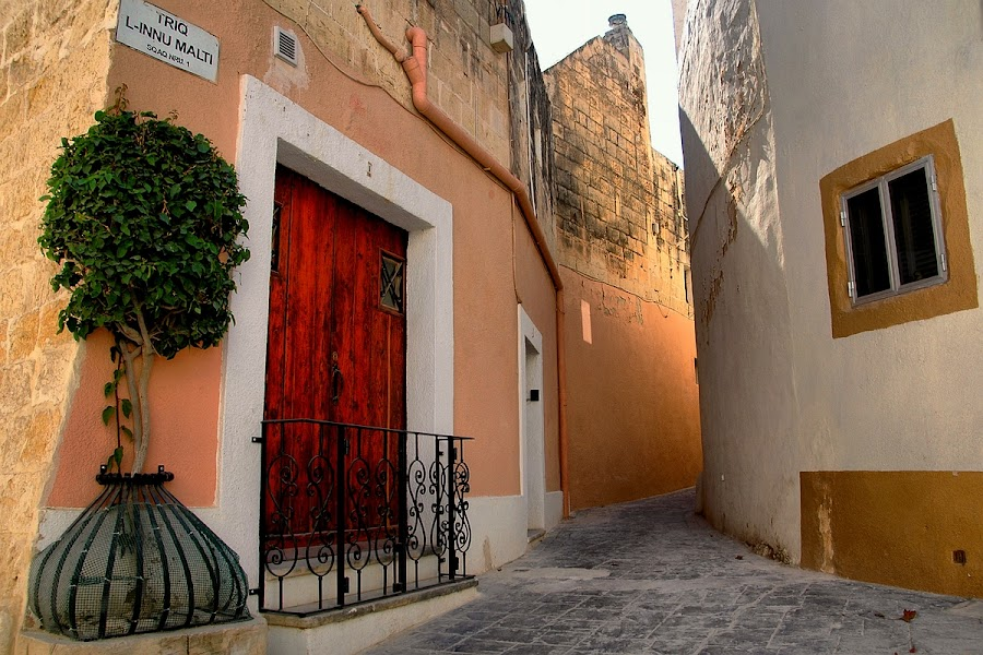 The Village Alley by Francis Xavier Camilleri - City,  Street & Park  Street Scenes ( tree, malta, zebbug, light, pavement, alley )