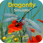 Dragonfly Simulator