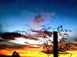 Photo: sunset#farm