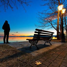 Sunset bench by Nikos Koutoulas - City,  Street & Park  City Parks ( clouds, δέντρα, μαυροχώρι, pwcsilhouettemotion, mavrochori, bench, waterscape, greece, lake, δέντρο, ηλιοβασίλεμα, σύννεφα, tree, sunset, παγκάκι, pwcbenches, ελλάδα, kastoria, καστοριά, λίμνη )