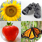 Easy Pictures - Photo-Quiz with 5 Different Topics icon