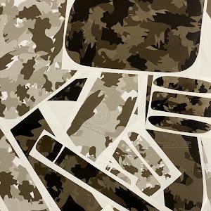 ランドクルーザープラド 150系 のカスタム事例画像 GMGさんの2019年12月15日16:47の投稿