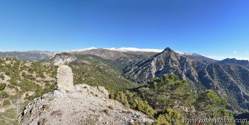 Trevenque - Cerro del Cocón - Cerro Gordo - Pico de la Carne