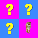 MatchUp Puzzle Game icon