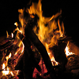 Camping  by Betty Sutton - Abstract Fire & Fireworks (  )