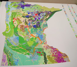 Photo: A geological map in progress.