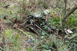 Photo: Car carcass on the way up Turtleback. Ancient car carcass, really.