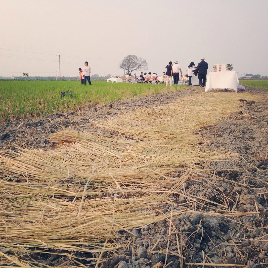 稻田裡的餐桌計畫