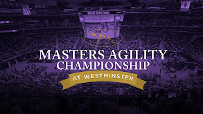 The Masters Agility Championship at Westminster thumbnail