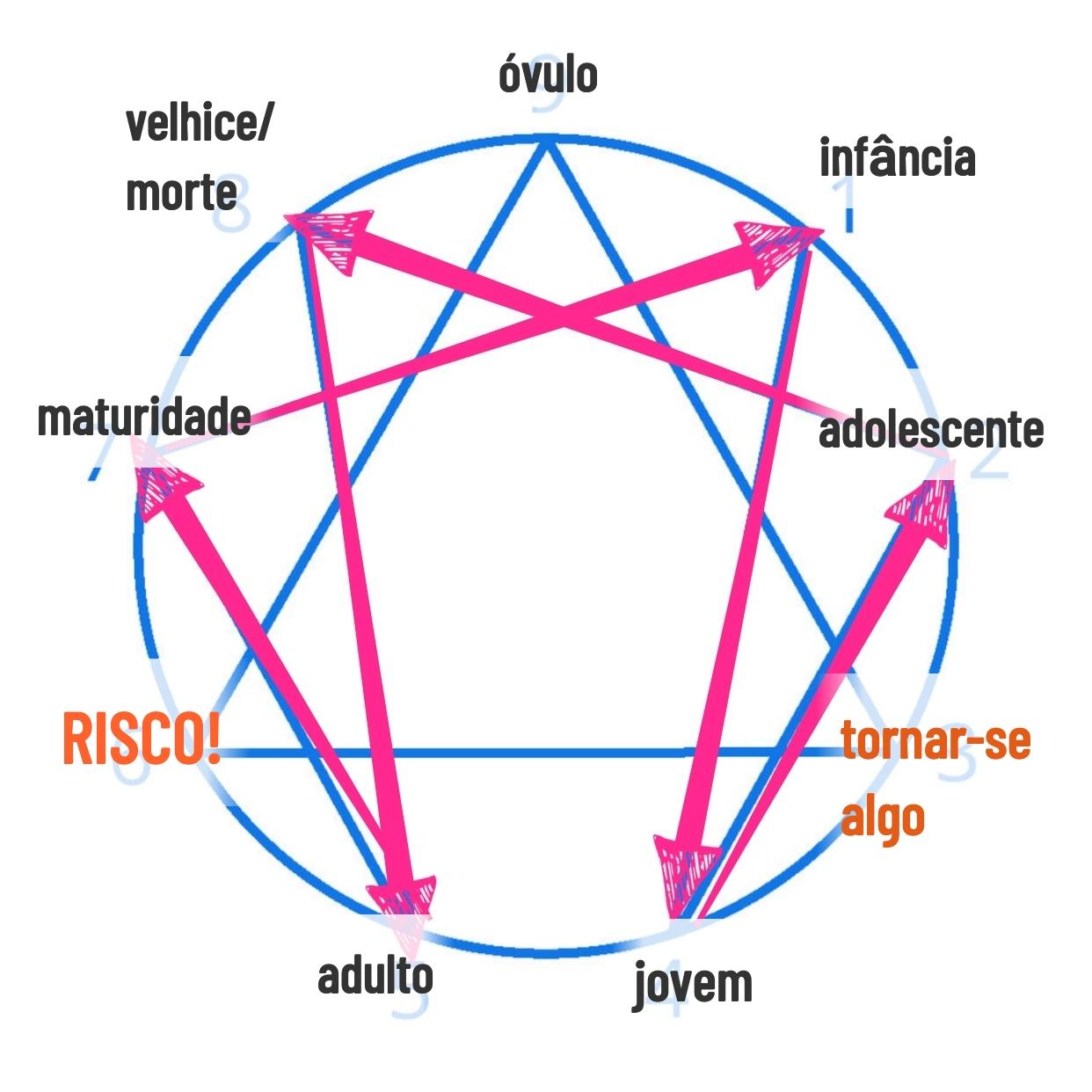O Eneagrama do ciclo da vida humana. De onde saímos e para onde vamos? Quais os objetivos que devemos entender em cada fase de vida?