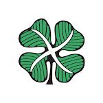 Celtic News Now