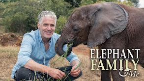 Elephant Family and Me thumbnail