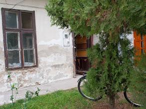 Photo: Előzetes felmérés Fotó: Vörös Anna (www.fotokontakt.hu)