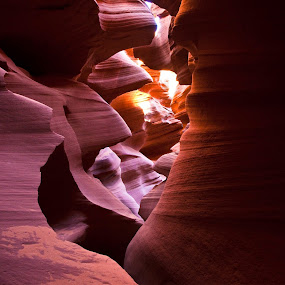 The Antelope by Surentharan Murthi - Landscapes Travel