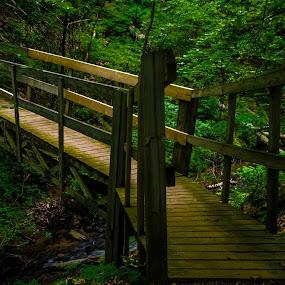 Bridge over Muskegon River Tributary by Chris Mowers - Buildings & Architecture Bridges & Suspended Structures ( michigan, stream, nature, bridge, muskegon river )