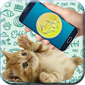 Cat translator (prank) icon