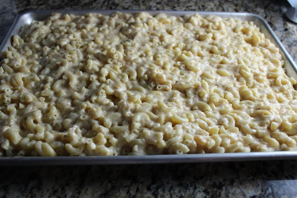 Fold the cheese sauce into macaroni. Pour the mac and cheese into a shallow...