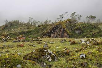 Photo: Bosques de neblina Mollepata - Machupichu Semana Santa 2015
