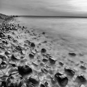 Wet rocks by Fariz Mohammad - Landscapes Beaches ( monochrome, beach, rocks, black&white )