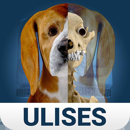 Osteology in Dogs (Licensed) 醫療 App LOGO-硬是要APP