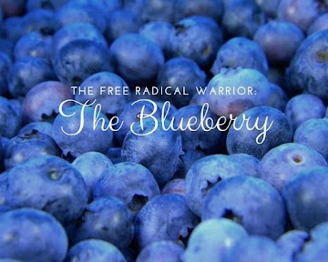 The Free Radical Warrior: The Blueberry Recipe