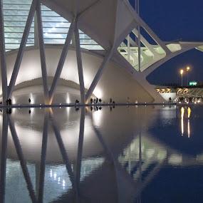 Calatrava Buildings, Valencia by Luis Felipe Moreno Vázquez - Buildings & Architecture Architectural Detail ( water, buildings, reflections, night, valencia, architecture, spain )