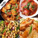 Pakistani Recipes in Urdu اردو icon