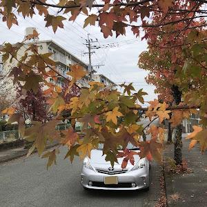 プリウスα ZVW41Wのカスタム事例画像 🐶( '-' 🐶 )年産まれyuzuさんの2020年10月31日22:45の投稿
