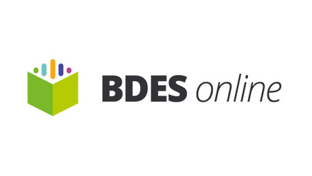 bdes-online base donnée france saas