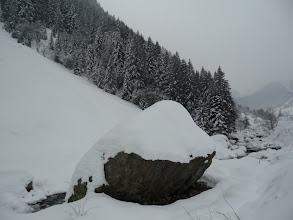 Photo: neve ottima