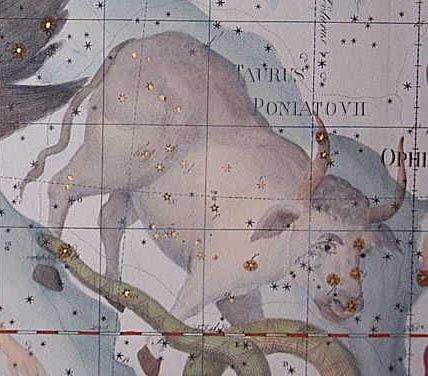 Photo: Poniatowskis tjur i Uranographia 1801. 117kB.