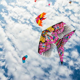 Destiny infinite by Abdullah Al Mamun Suman - Artistic Objects Toys ( sky, colour, blue, dream, kite )