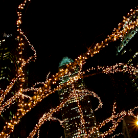 Holiday Uptown by Myra Brizendine Wilson - City,  Street & Park  Night ( uptown charlotte, nc, buildings in charlotte, christmas lights, christmas )