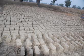 Photo: séchage des briques de la bergerie janvier 2011