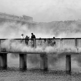 by Phyllis Plotkin - City,  Street & Park  Street Scenes ( fog, fog bridge, bridge, art installation )