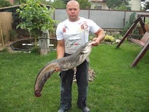 Photo: Oszoli István, 14 kilós harcsa, 2011.07.08.